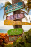 pieces of driftwood with hand painted names of Caribbean islands attached to a palm tree in St.Croix, US Virgin Islands
